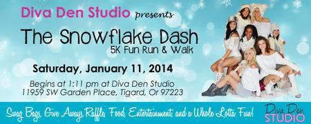 Snowflake-Dash-banner