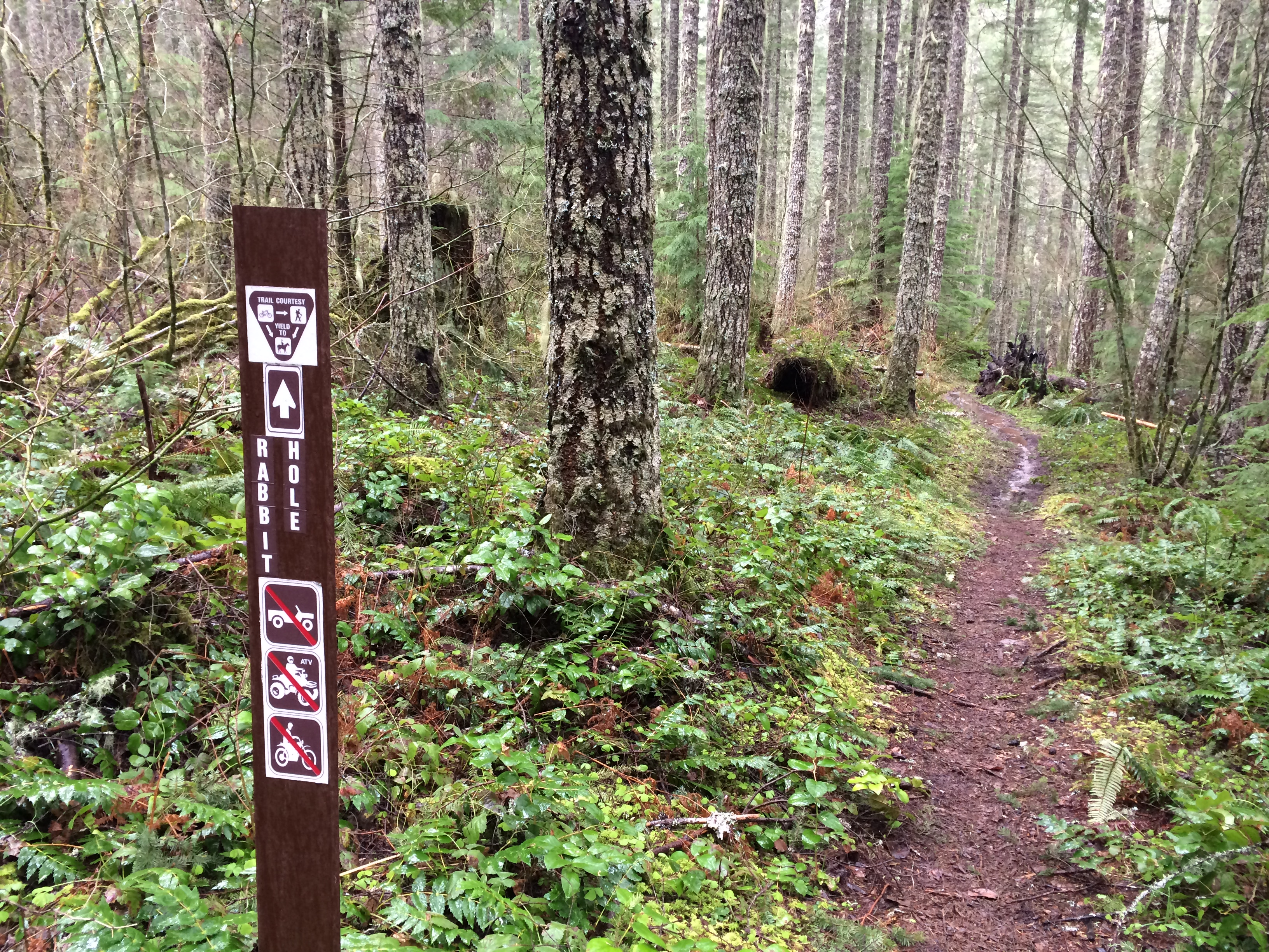 On the trail! Photo credit: Marilyn Tycer