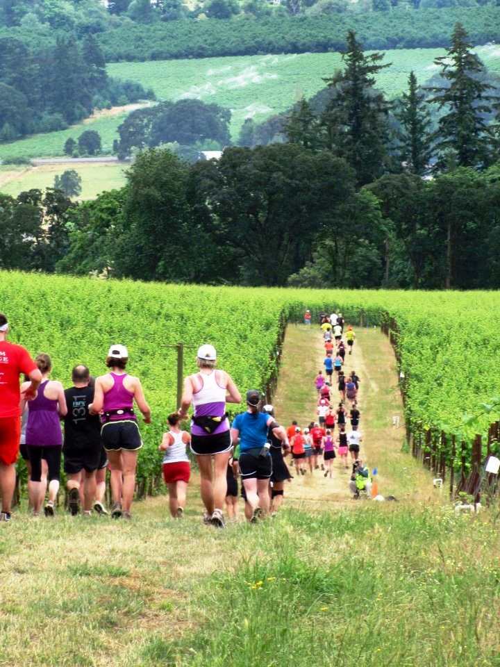 Runners on the Winter's Hill Vineyard portion of a past Fueled by Fine Wine - but the Winter's Hill Vineyard Run is capped at only 50 participants!